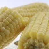 润禾有机白玉米棒  礼盒装